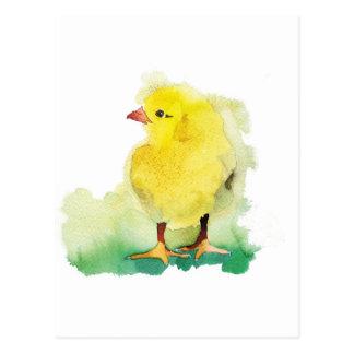 Polluelo del bebé postal