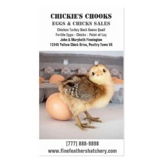Polluelo del bebé y huevo fresco tarjetas de visita