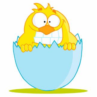 polluelo divertido del bebé que trama del huevo llavero fotográfico