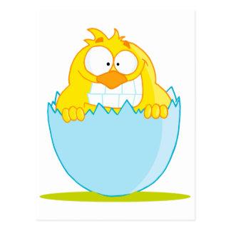 polluelo divertido del bebé que trama del huevo tarjeta postal