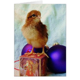 Polluelo en el ornamento del navidad del vintage tarjeton