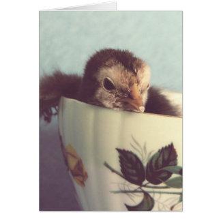 Polluelo en una taza de té Pascua del vintage Tarjetón