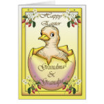 Polluelo feliz de Pascua con el huevo, para los Felicitaciones