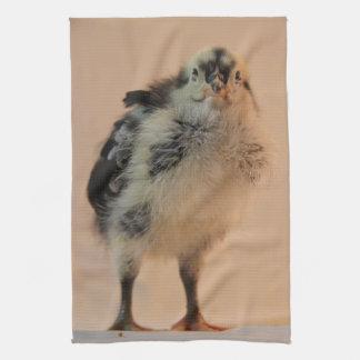 Polluelo feo toalla