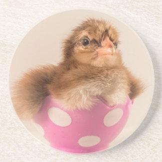 Polluelo lindo del bebé en el huevo de Pascua Posavasos Cerveza