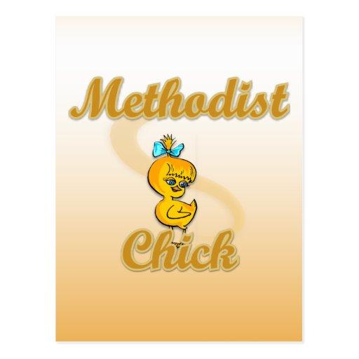 Polluelo metodista tarjeta postal