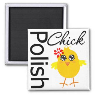 Polluelo polaco imán cuadrado