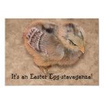Polluelo - pollo mullido Pascua del bebé Comunicado Personalizado