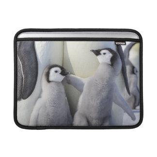 Polluelo travieso del pingüino de emperador funda macbook air