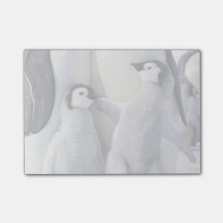Polluelo travieso del pingüino de emperador notas post-it®