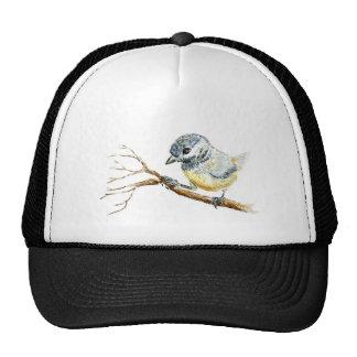 Polluelo-uno-Dee capsulado negro del invierno, láp Gorra