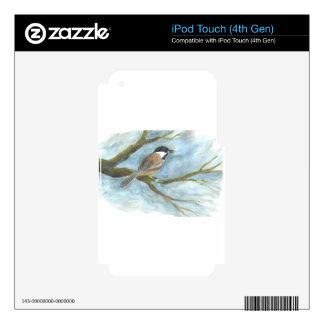 Polluelo-uno-Dee capsulado negro en primavera iPod Touch 4G Skin