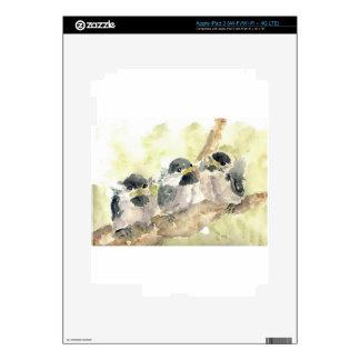 Polluelo-uno-Dees tres nuevo - lápiz de la acuarel iPad 3 Skin