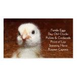 Polluelo viejo del día - capas o granja de las par tarjeta de visita