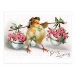 Polluelo y flores de Pascua