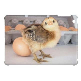 Polluelo y huevos preciosos del bebé iPad mini protectores