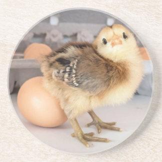 Polluelo y huevos preciosos del bebé posavasos diseño
