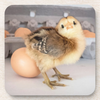 Polluelo y huevos preciosos del bebé posavaso