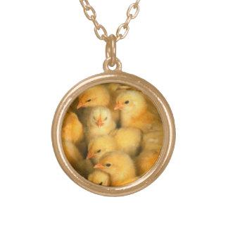 Polluelos amarillos del bebé collar