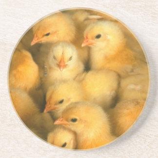 Polluelos amarillos del bebé posavasos para bebidas