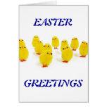 Polluelos de Pascua Felicitaciones