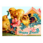 Polluelos de Pascua Postales