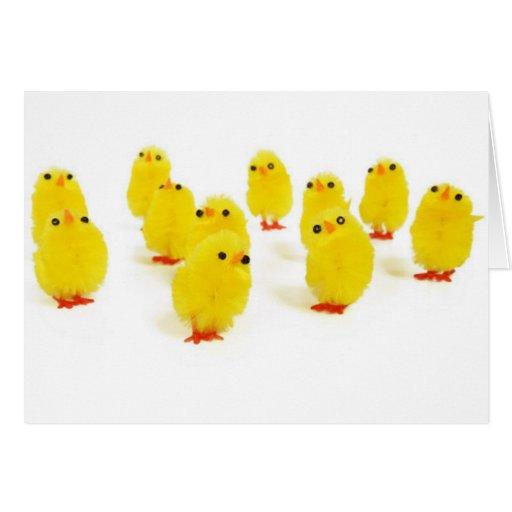 Polluelos de Pascua Tarjeta De Felicitación