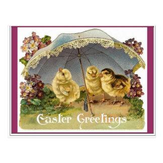 Polluelos de Pascua Tarjetas Postales