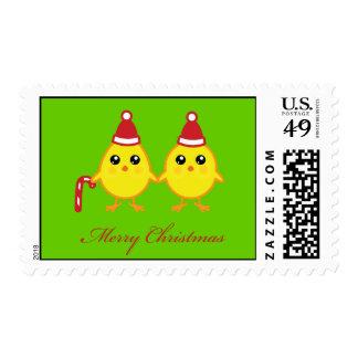 Polluelos del navidad