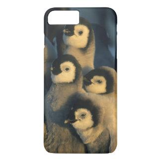 Polluelos del pingüino de emperador en la funda iPhone 7 plus