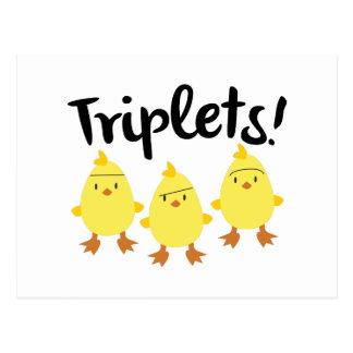 Polluelos del trío tarjetas postales