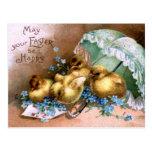 Polluelos encantadores de Pascua Postales