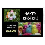 Polluelos multicolores felicitaciones