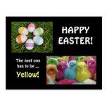 Polluelos multicolores tarjeta postal