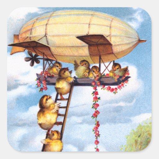 Polluelos que viajan calcomania cuadradas