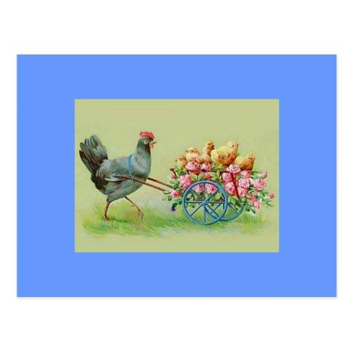 Polluelos y rosas del pollo de Pascua del vintage Postal