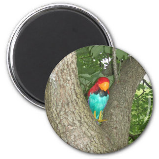 Polly Magnet