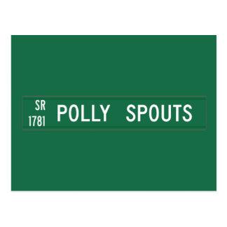 Polly Spouts Road, Street Sign, North Carolina, US Postcard