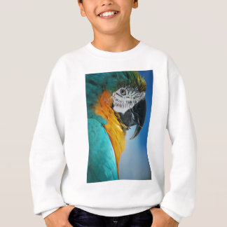 Polly Sweatshirt