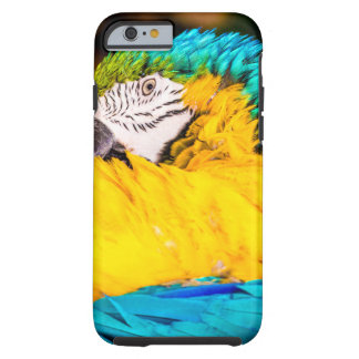 Polly wants an Iphone Tough iPhone 6 Case