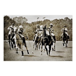 Polo Horses Galloping Poster