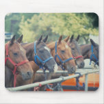 Polo Pony String Mouse Pad