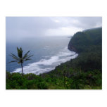 Pololu Valley Lookout with Palm Tree, Hawaii, Post Postcards