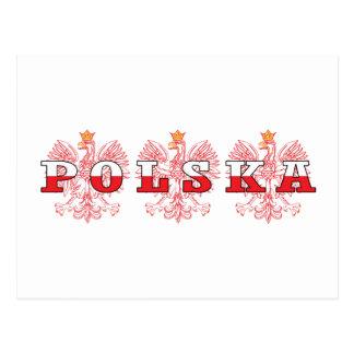 Polska Red Eagles Postcard