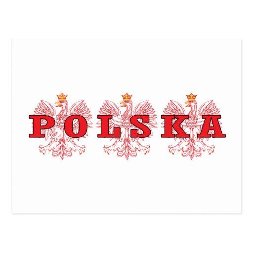 Polska Red Eagles Postcards
