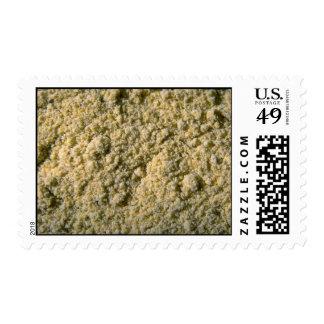 Polvo de la mostaza sello