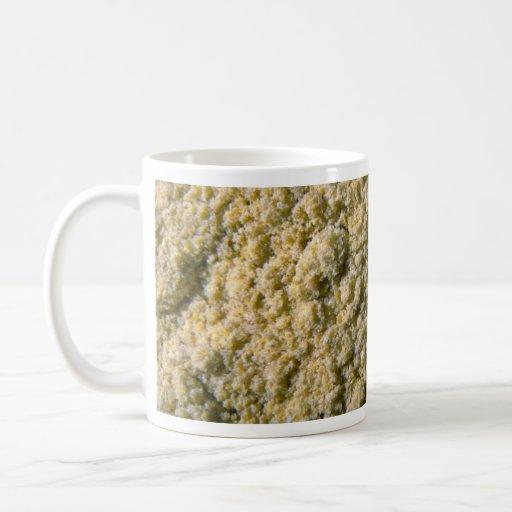 Polvo de la mostaza tazas de café