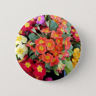 Polyanthus Flowers Button