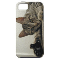 Polydactyl Kitty Cat MIRA gives THUMBS UP! =^..^= iPhone 5 Case