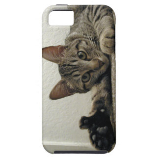 Polydactyl Kitty Cat MIRA gives THUMBS UP!  =^..^= iPhone 5 Cases